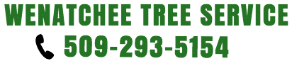Wenatchee Tree Service - Tree Removal Wenatchee, Leavenworth, Chelan